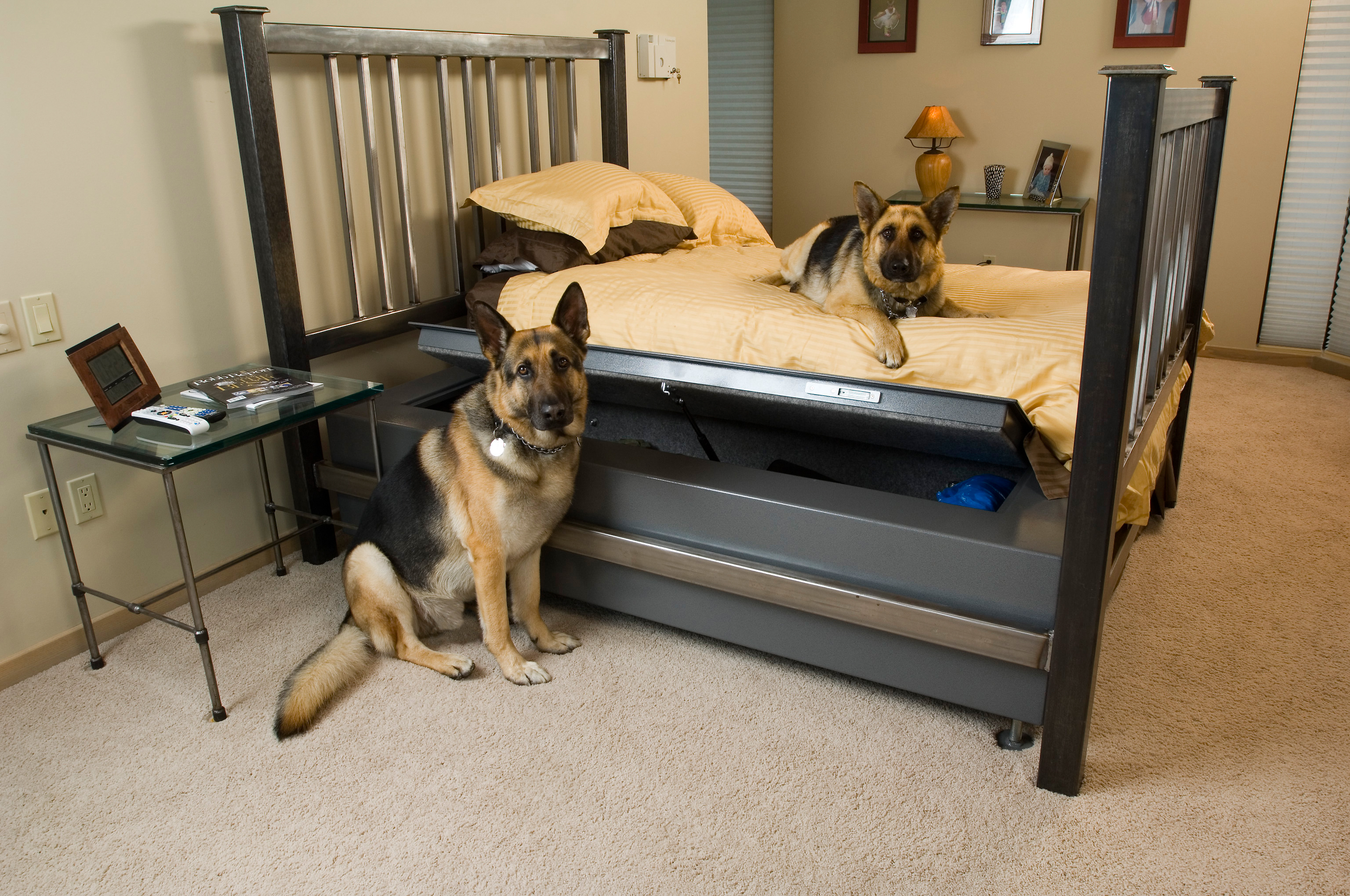 BedBunker-Safe-with-Dogs